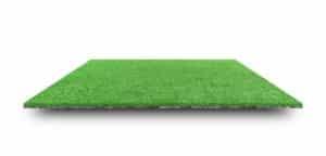 Hühnerzucht Gras